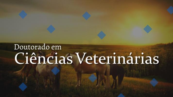 Imagem ilustrativa com cavalos e os dizeres Doutorado em Ciências Veterinárias
