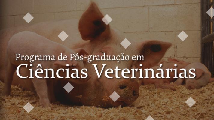 Imagem ilustrativa com suínos e os dizeres Programa de Pós-graduação em Ciências Veterinárias